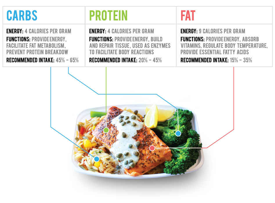 Macro Plate - Healthy Gourmet Meal Plans with Customized ...